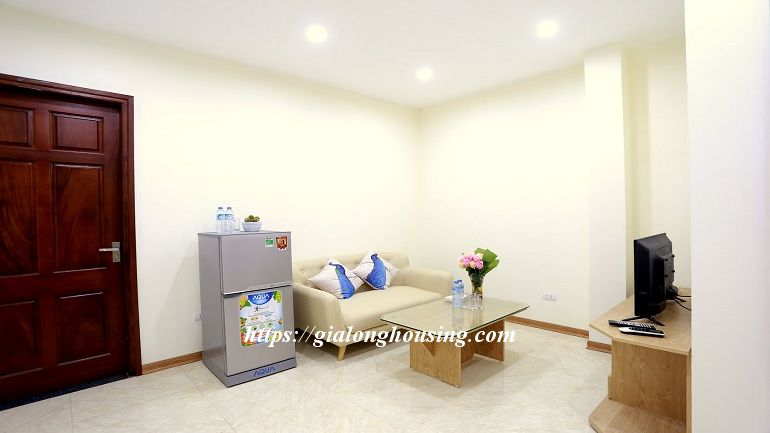 Brand new serviced apartment in Com Vong for rent 3