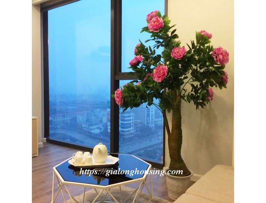 Nice apartment for rent in high floor, Le Trong Tan 6